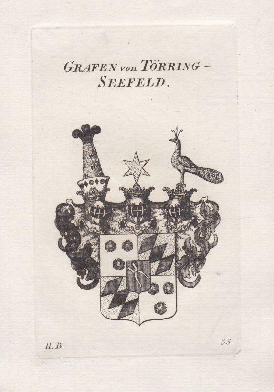 Toerring Bayern Wappen coat of arms heraldry Heraldik Kupferstich antique print