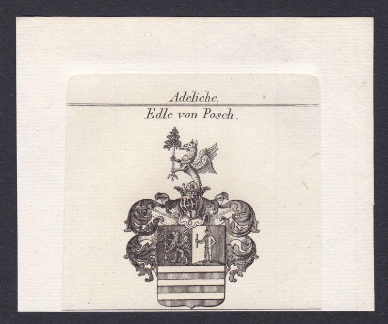 1820 Posch Wappen Adel coat of arms Heraldik Kupferstich antique print