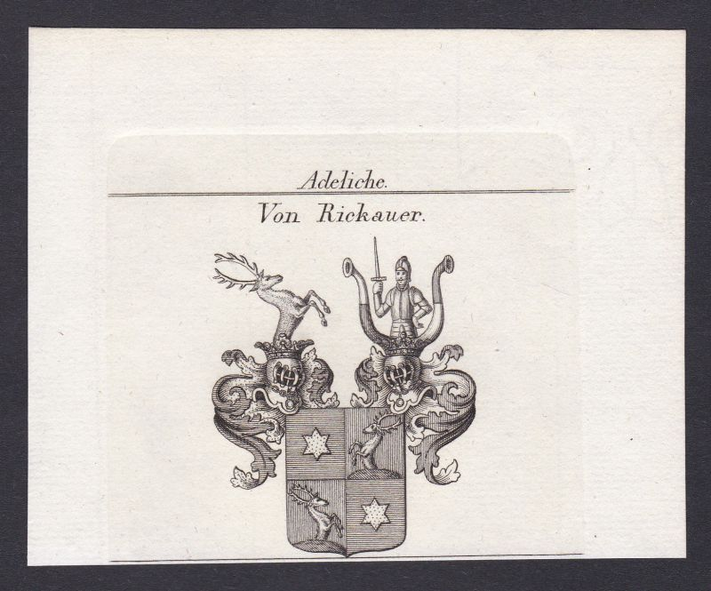 1820 Rickauer Wappen Adel coat of arms Heraldik Kupferstich antique print