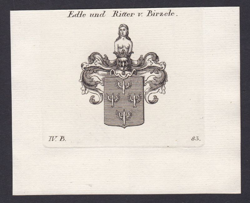 1820 Birzele Wappen Adel coat of arms Heraldik Kupferstich antique print