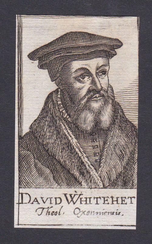 17. Jh. David Whitehead / theologian Theologe Oxford Portrait Kupferstich