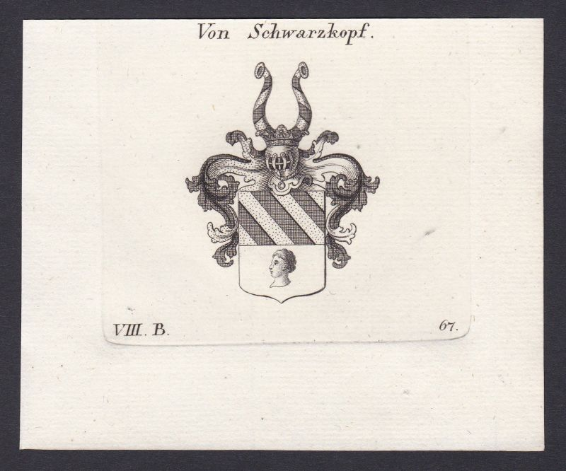 1820 Schwarzkopf Wappen Adel coat of arms Heraldik Kupferstich antique print