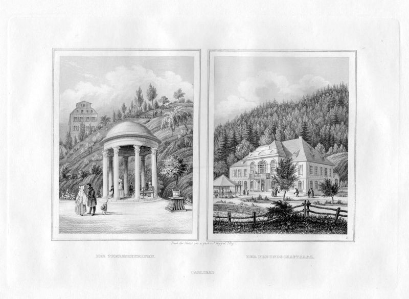 1850 Theresienbrunnen Freundschaftssaal Carlsbad Karlsbad Stahlstich Poppel