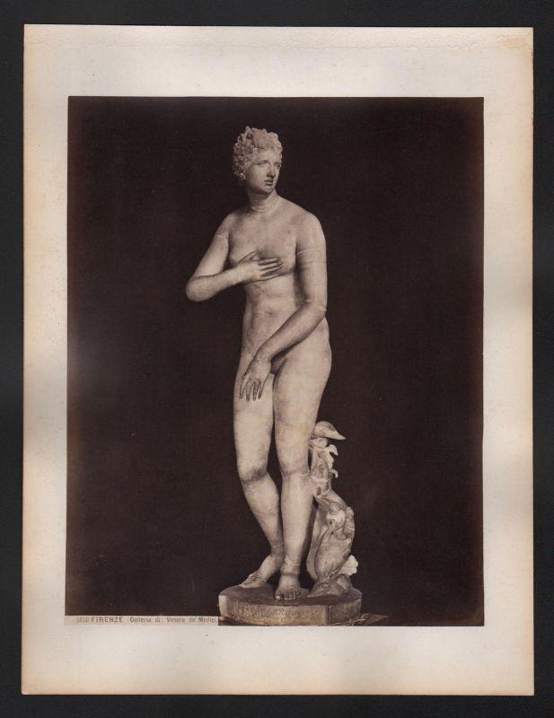 1890 Firenze Venere de Medici Familie Italien Florenz antique Foto Photo albumen
