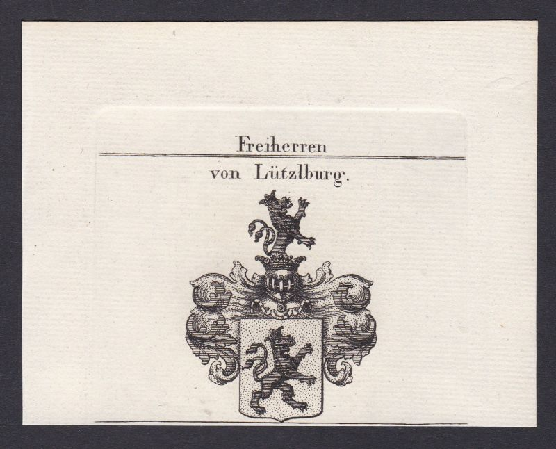 1820 Lützelburg Lothringen Frankreich Wappen Adel coat of arms Kupferstich