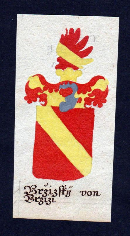 18. Jh. Brzizky von Brziz Böhmen Manuskript Wappen Adel coat of arms heraldry 0