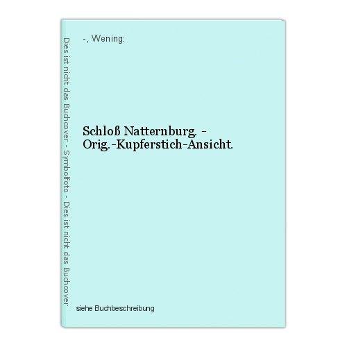 Schloß Natternburg. - Orig.-Kupferstich-Ansicht. -, Wening: 0