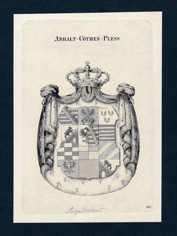 1820 Anhalt Cöthen Pless Wappen Adel coat of arms Heraldik Kupferstich engraving
