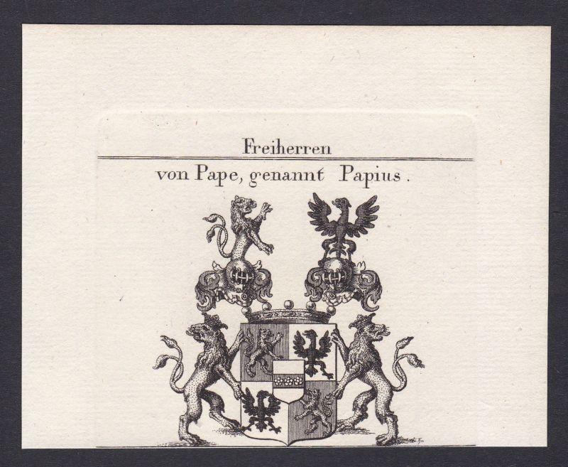 1820 Papius Papen Würzburg Wappen Adel coat of arms Kupferstich antique print 0