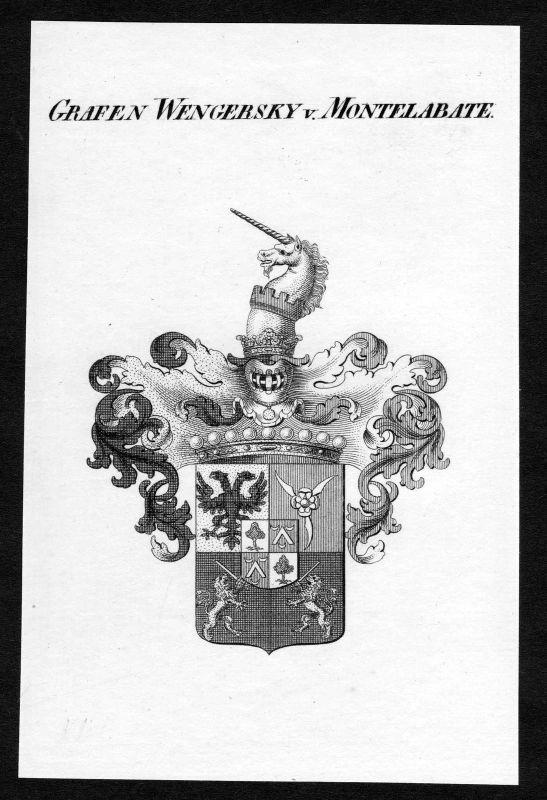 Ca.1820 Wengersky-Montelabate Wappen Adel coat of arms Kupferstich antique print 0
