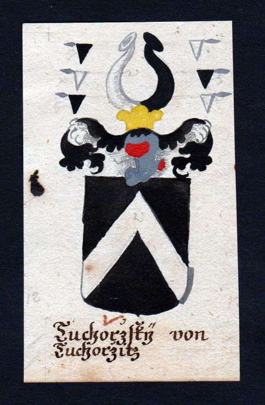 18. Jh. Tuchorzsky von Tuchorzitz Böhmen Manuskript Wappen Adel coat of arms 0