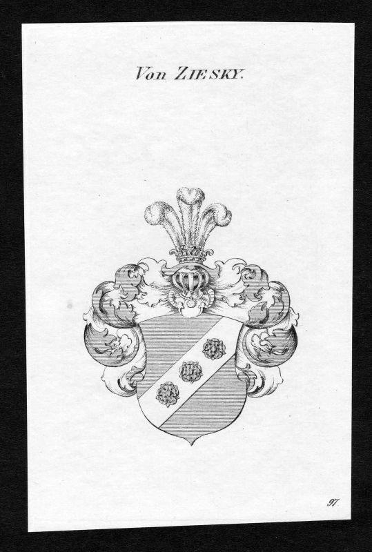 Ca. 1820 Ziesky Wappen Adel coat of arms Kupferstich antique print heraldry 0
