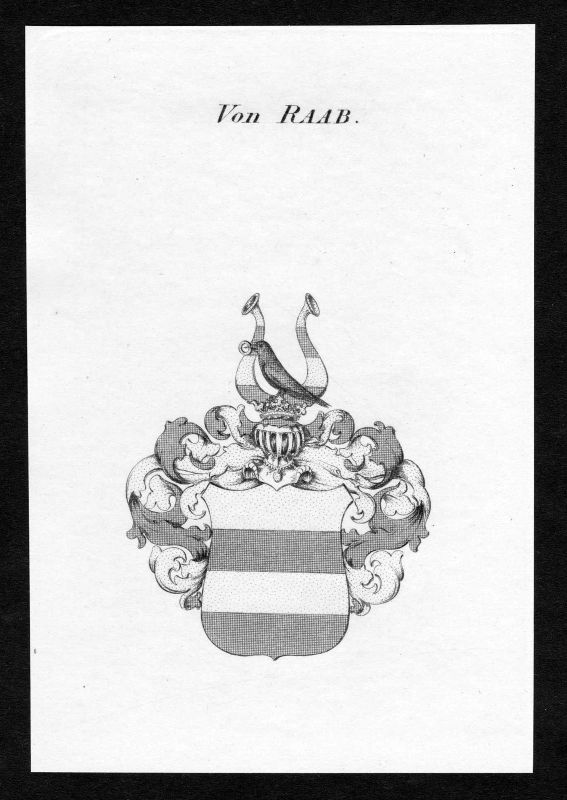 Ca.1820 Raab Wappen Adel coat of arms Kupferstich antique print heraldry 0