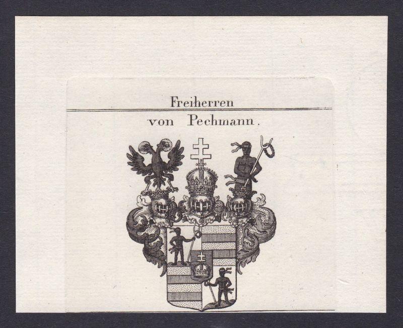 1820 Pechmann Bechmann Wappen Adel coat of arms Heraldik Kupferstich 0
