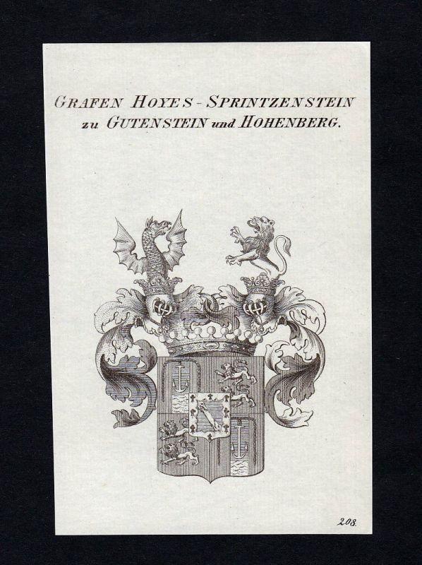 1820 Hoyos Gutenstein Hohenberg Wappen Adel coat of arms Kupferstich engraving