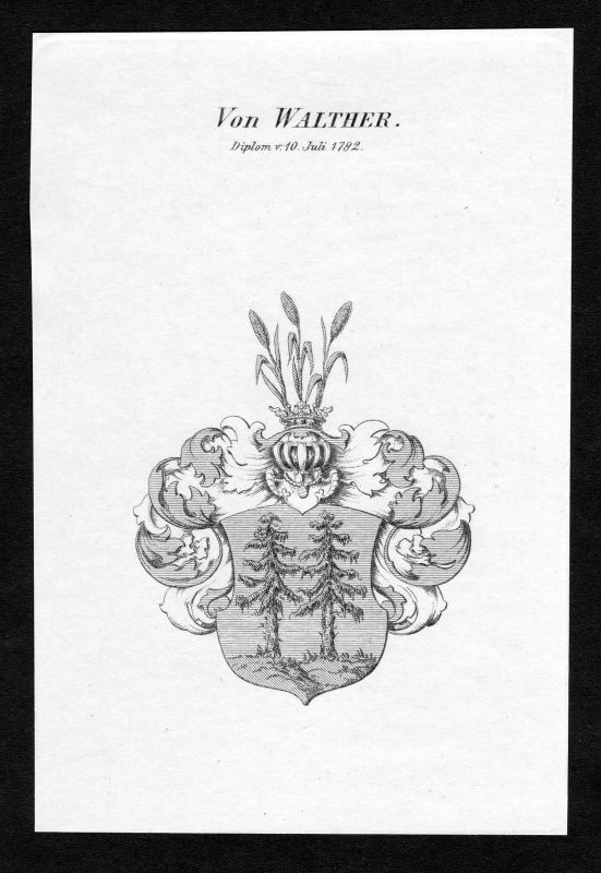 Ca. 1820 Walther Wappen Adel coat of arms Kupferstich antique print heral 129968