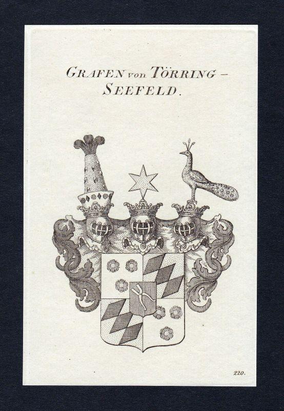 1820 Törring-Seefeld Wappen Adel coat of arms Heraldik Kupferstich engraving