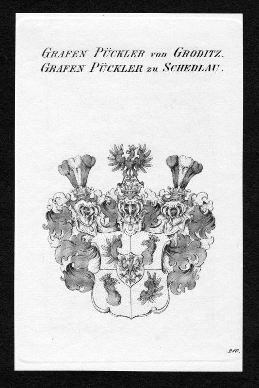 Ca. 1820 Pückler Pueckler Wappen Adel coat of arms Kupferstich antique print