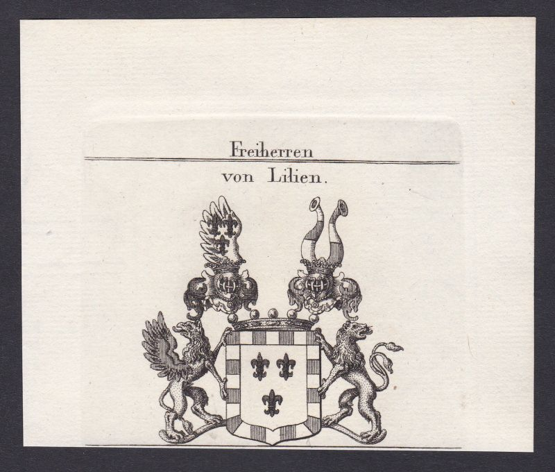 1820 Lilien Westfalen Wappen Adel coat of arms Kupferstich antique print