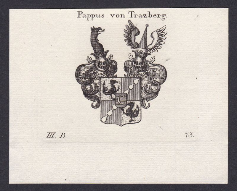 1820 Pappus Tratzberg Wappen Adel coat of arms Kupferstich antique print