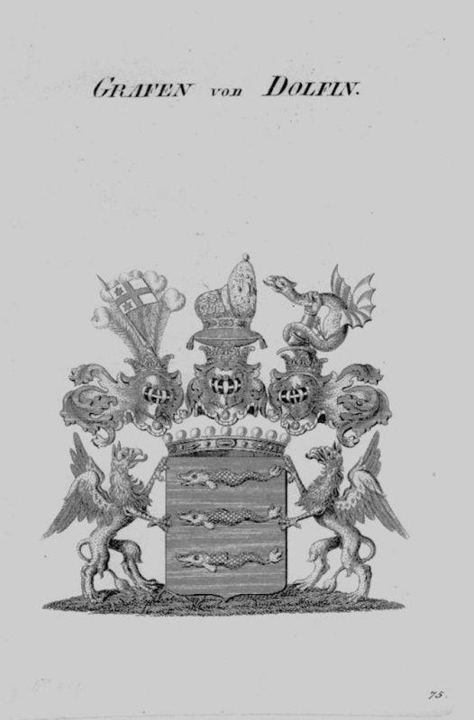 1820 - Dolfin Wappen Adel coat of arms heraldry Heraldik crest Kupferstic 102691