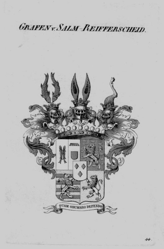 1820 - Salm Reifferscheid Wappen Adel coat of arms heraldry Heraldik Kupferstich