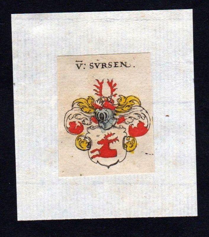 17. Jh. Sürsen Suersen Wappen Adel coat of arms heraldry Heraldik Kupferstich