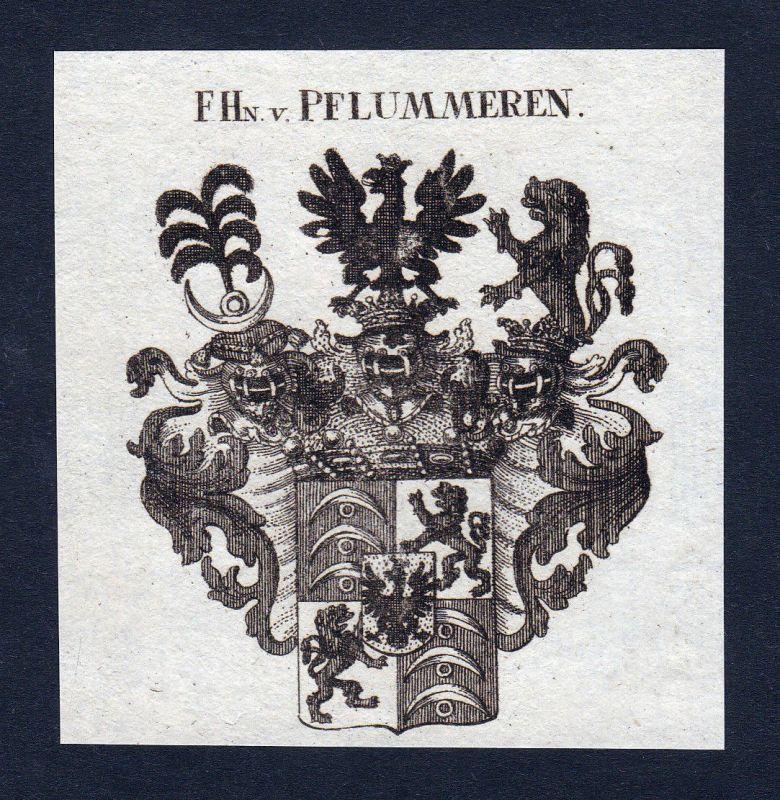 Ca. 1820 Pflummeren Pflummern Wappen Adel coat of arms Kupferstich antique print
