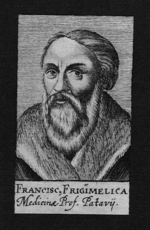 1680 - Franciscus Frigimelica Arzt doctor Professor Padua Kupferstich Portrait