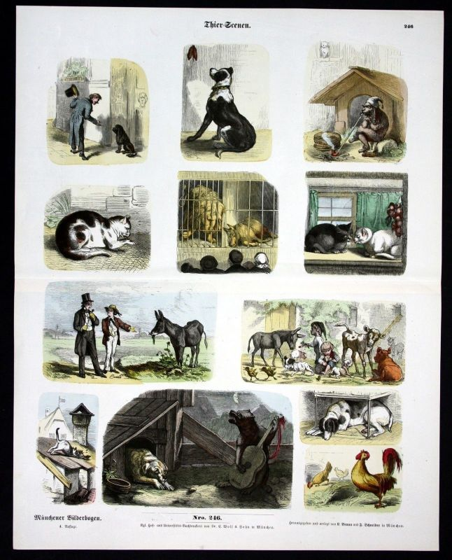 1890 Katze Katzen Hund Hunde Esel Haustiere Münchener Bilderbogen