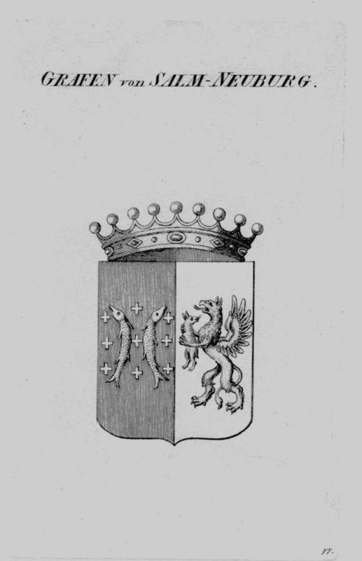 1820 - Salm Neuburg Wappen Adel coat of arms heraldry Heraldik crest Kupferstich