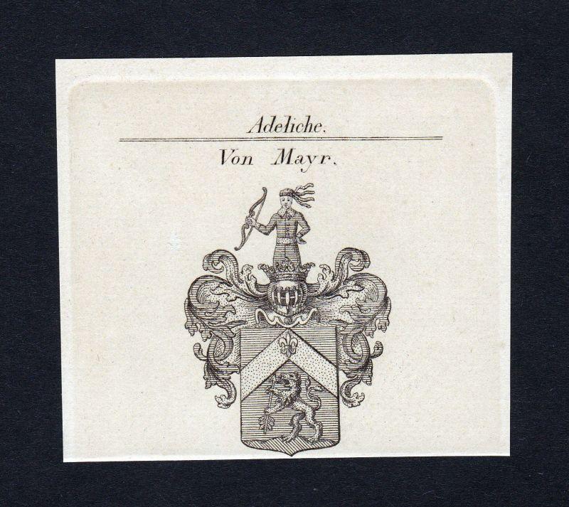 1820 Mayr Wappen Adel coat of arms heraldry Heraldik Kupferstich engraving