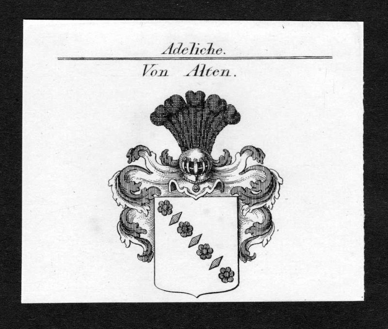 Ca. 1820 Alten Wappen Adel coat of arms Kupferstich antique print heraldry