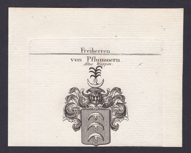 1820 Pflummern Wappen Adel coat of arms heraldry Kupferstich antique print
