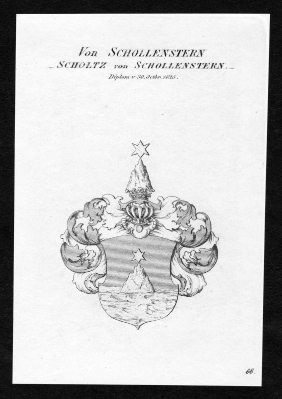 Ca.1820 Schollenstern Scholtz Wappen Adel coat of arms Kupferstich antique print 0