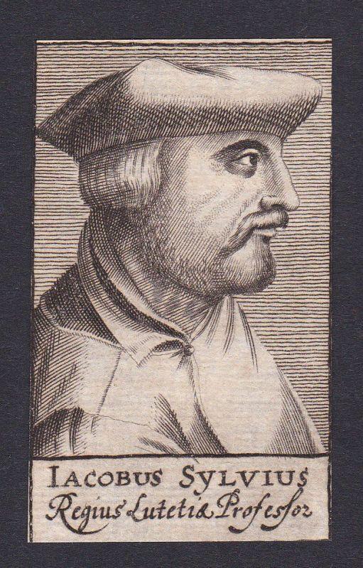 Jacobus Sylvius / doctor Arzt Mediziner Frankreich France Portrait Kupferstich 0
