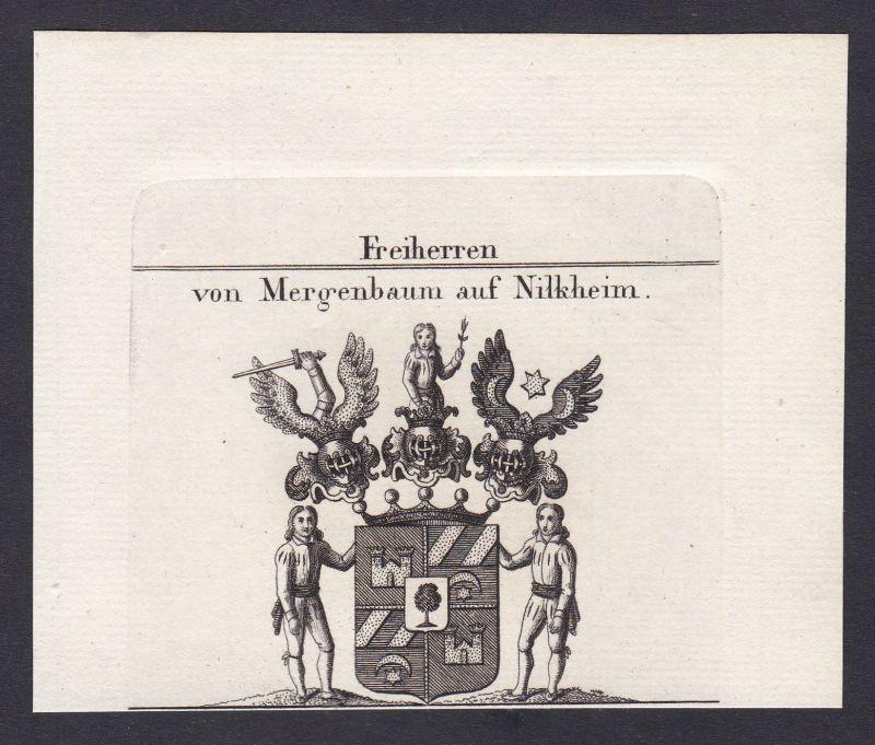 1820 Mergenbaum Nilkheim Wappen Adel coat of arms Heraldik Kupferstich 0