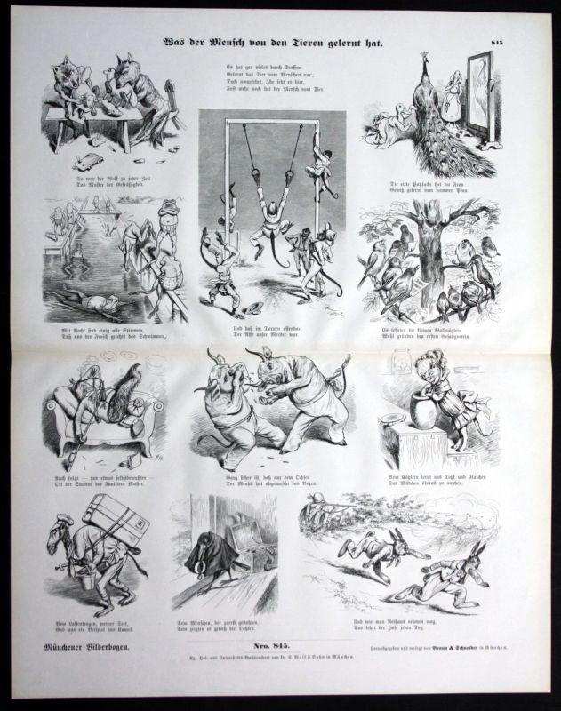 1900 Was der Mensch von Tieren lernt Beispiele Münchener Bilderbogen 0