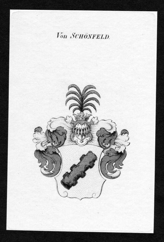 Ca. 1820 Schönfeld Schoenfeld Wappen Adel coat of arms Kupferstich antique print 0