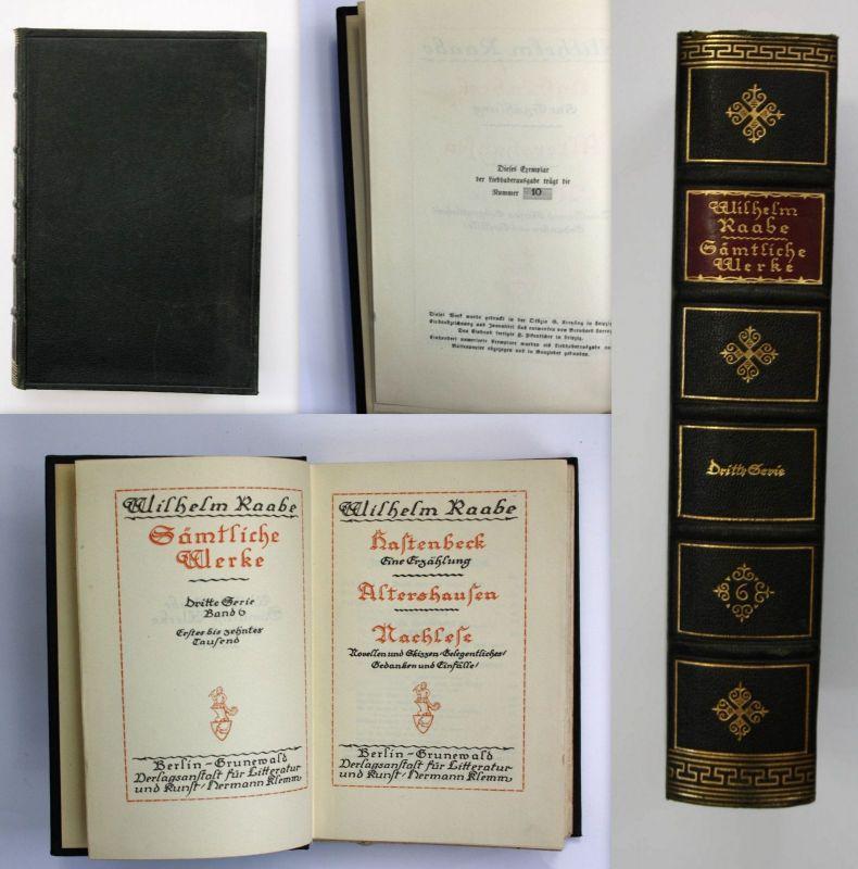 Wilhelm Raabe Hastenbeck Erzählung 1920 Sämtliche Werke leder Liebhaberausgabe 0