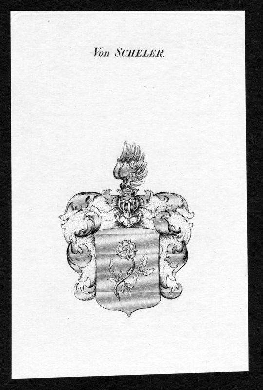 Ca. 1820 Scheler Wappen Adel coat of arms Kupferstich antique print heraldry 0