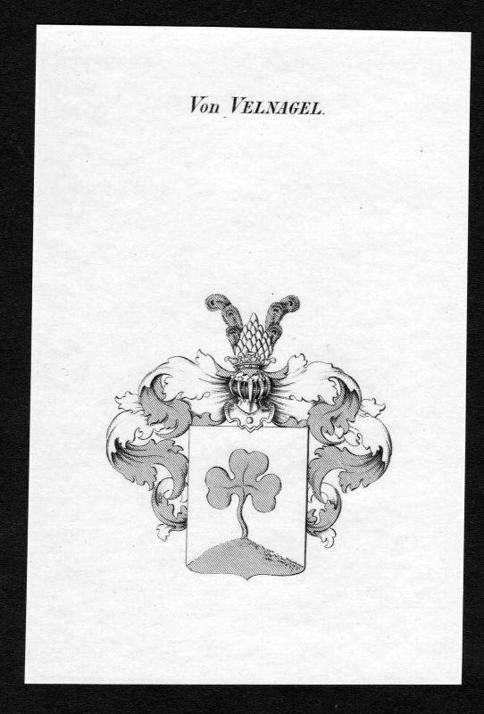 Ca. 1820 Velnagel Wappen Adel coat of arms Kupferstich antique print heraldry 0