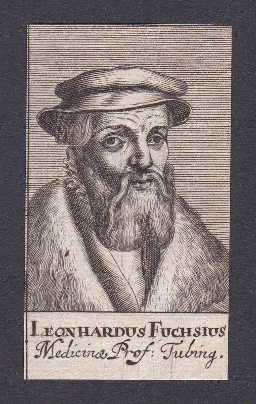 17. Jh. Leonhart Fuchs / doctor Arzt Mediziner Tübingen Portrait Kupferstich