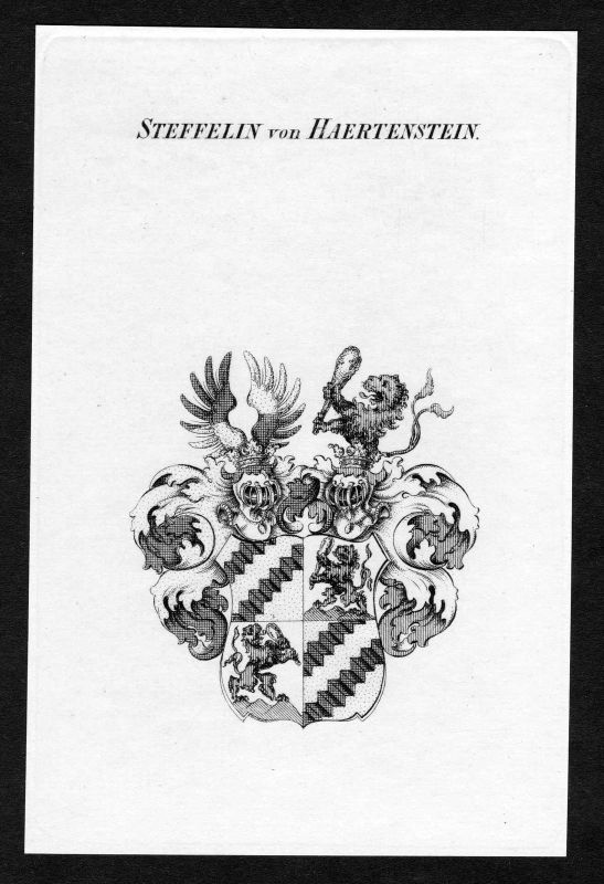 Ca. 1820 Steffelin von Hartenstein Wappen Adel coat of arms Kupferstich antique 0