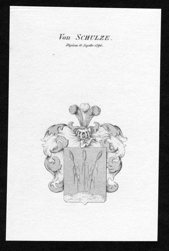 Ca. 1820 Schulze Wappen Adel coat of arms Kupferstich antique print heraldry 0