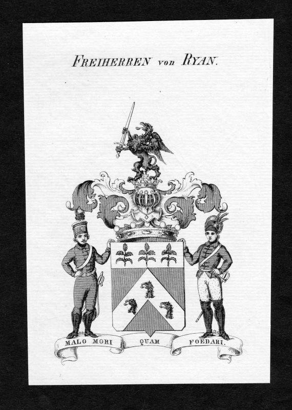 Ca. 1820 Ryan Wappen Adel coat of arms Kupferstich antique print heraldry 0