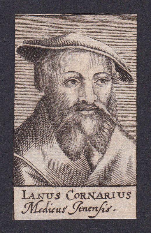 17. Jh. Janus Cornarius / doctor Mediziner Arzt Jena Portrait Kupferstich