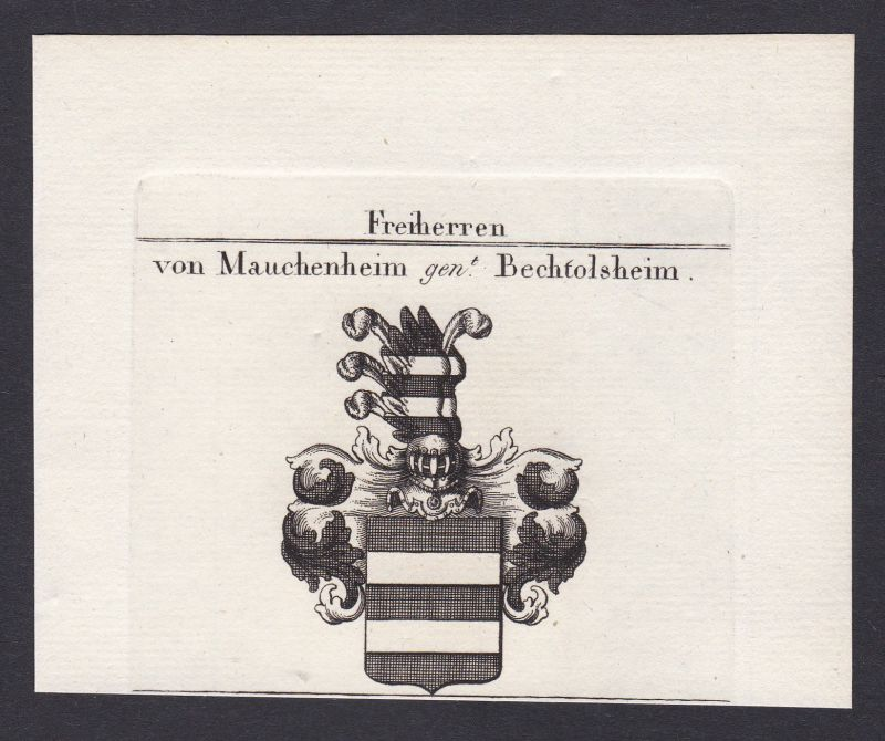 1820 Mauchenheim Bechtolsheim Wappen Adel coat of arms Kupferstich antique print 0