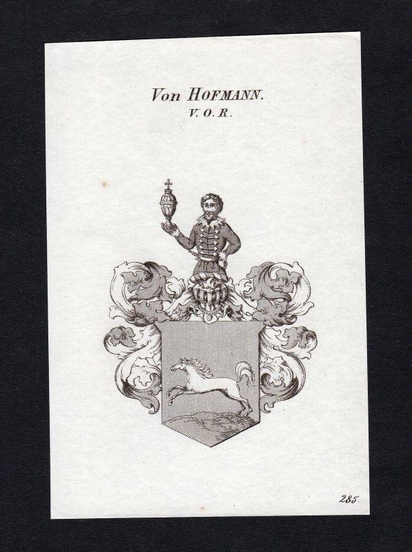 1820 Hofmann Wappen Adel coat of arms heraldry Heraldik Kupferstich engraving