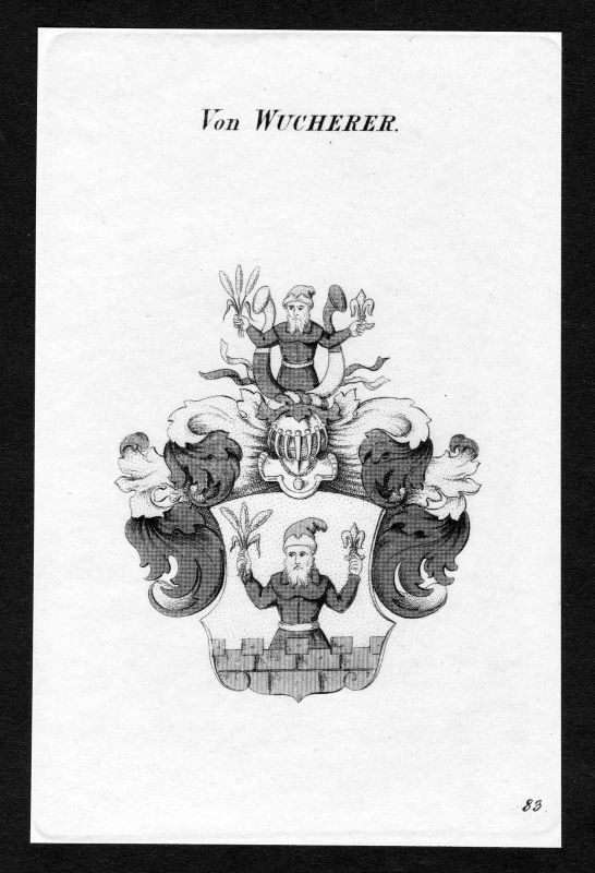 Ca. 1820 Wucherer Wappen Adel coat of arms Kupferstich antique print heraldry 0